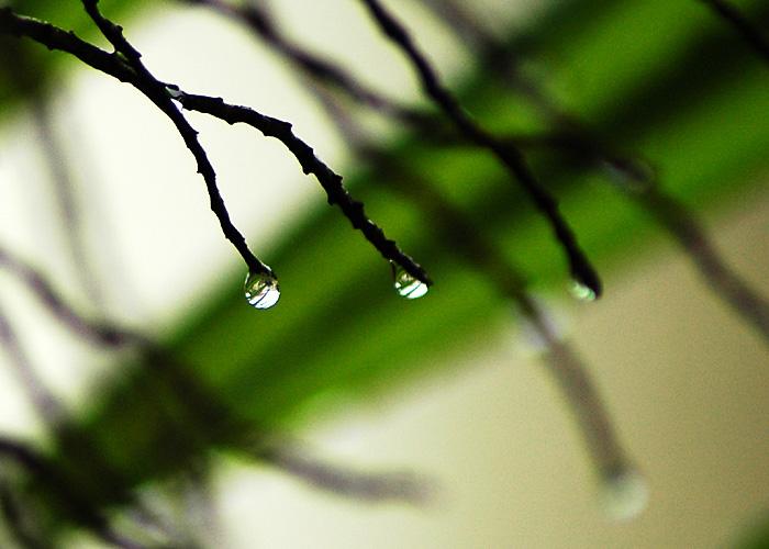 More Drops