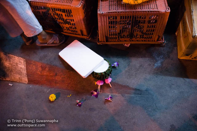 A dropped krathong revealing the styrofoam base