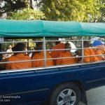 Monks Arrive