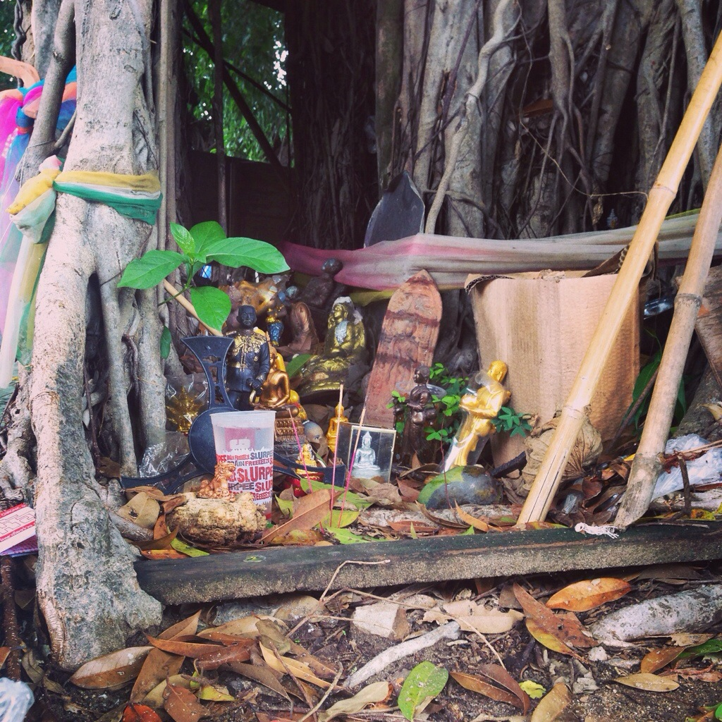 Hidden Shrine